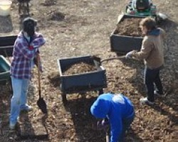SIFE students mulching at The Homestead