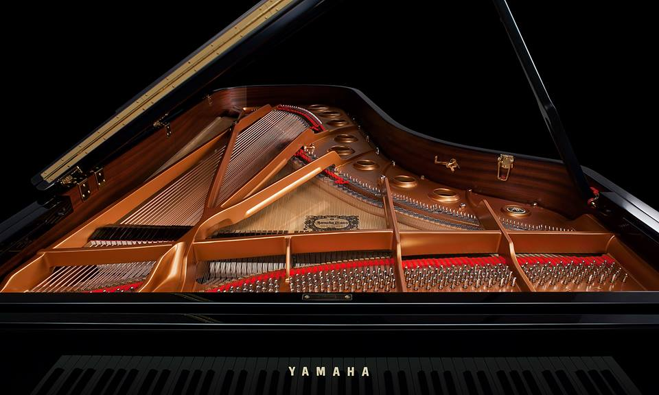 keys to excellence nicholas roth and drake piano students in