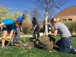 20160415_StudentPlantingTrees_Tree Campus_007