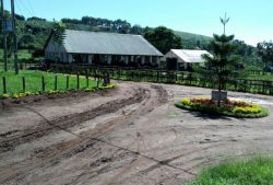 Simba Farms