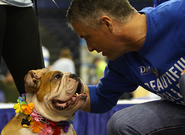 Drake Relays kicks off with 38th annual Beautiful Bulldog Contest® on Sunday, April 23